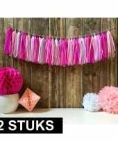 Geboorte 2x vintage tassel slingers roze 5 meter
